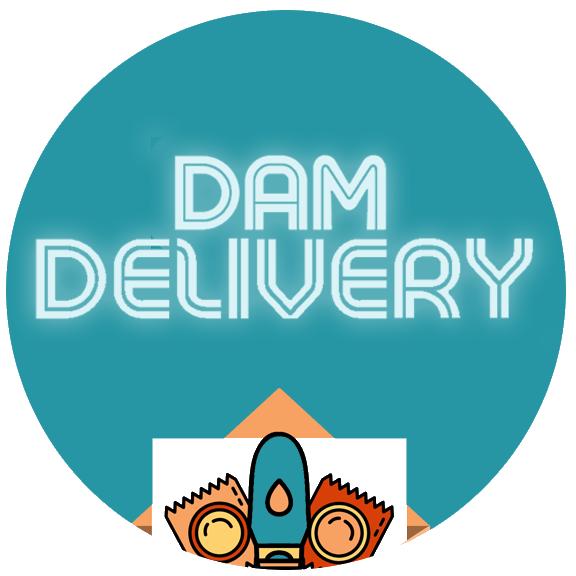 dam delivery service